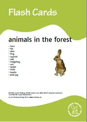Bildkarten: Animals in the forest