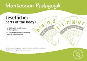Lesefächer: parts of the body I