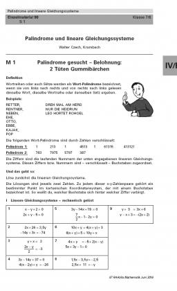 Palindrome und lineare Gleichungssysteme
