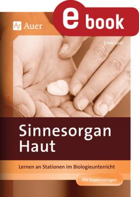 Sinnesorgan Haut