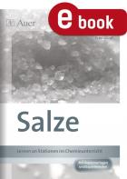 Chemie an Stationen: Salze